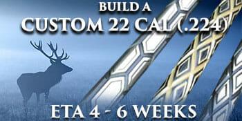 custom 22 cal
